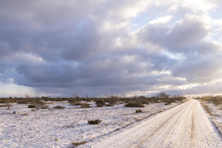 Gotland vinterlandskab