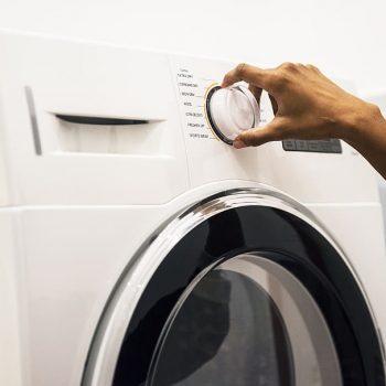 lammeskind i vaskemaskine